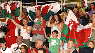 Welsh Supporters