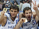 Greece Shocks Europe and Win 2005 EuroBasket Gold