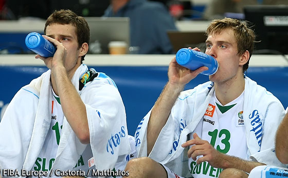 13. Zoran Dragic (Slovenia)