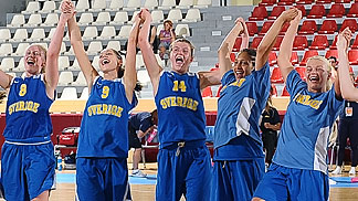 Sweden celebrate their victory over Turkey